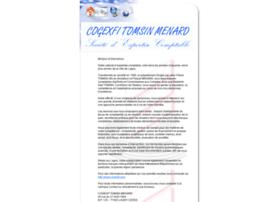 cogexfi.com