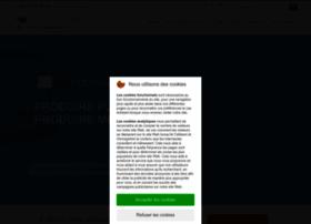 cogivea.com