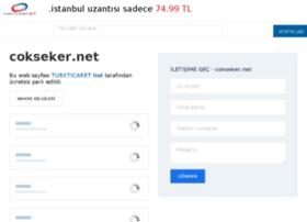 cokseker.net