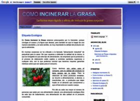 comoincinerarlagrasa.blogspot.com