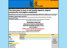 comparethepigeon.com