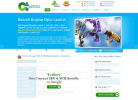 competeinfotech.com