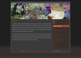 confettidisulmona.com