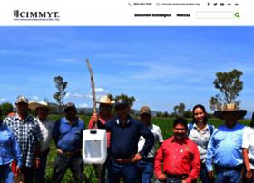 conservacion.cimmyt.org