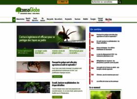 consoglobe.com