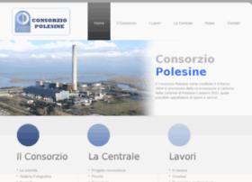 consorziopolesine.it