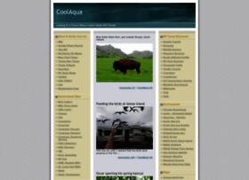 coolaqua.blogs.com