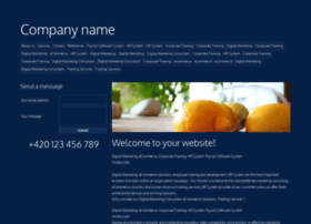 corporate-training.widezone.net
