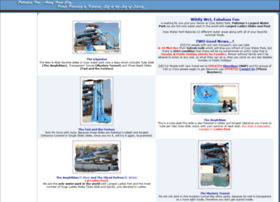 cosywaterpark.com