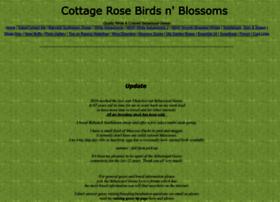 cottage_rose_birdsnblossoms.webs.com