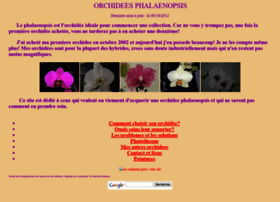 couleur-orchidee.fr