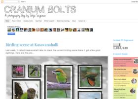 craniumbolts.blogspot.com
