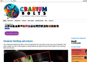 craniumbolts.blogspot.in