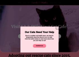 crumbsandwhiskers.com
