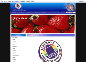 cukurovasebzemeyve.com