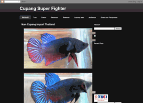 cupangsuperfighter.blogspot.com