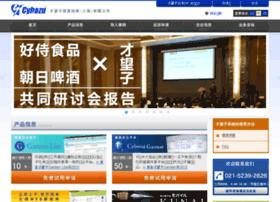 cybozu.net.cn