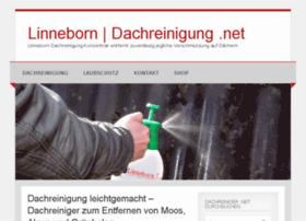dachreinigung.net