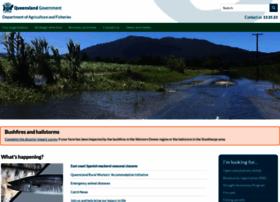 daff.qld.gov.au