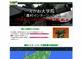 daigakuin-internship.npo-egao.net