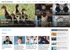 dailycrawler.com