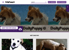 dailypuppy.com