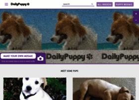 dailypuppy.com