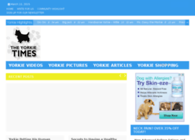 dailyyorkievideos.com