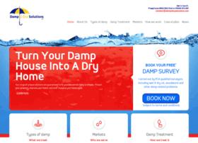 damp-solutions.com