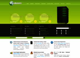 datanumeric.com