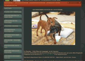 dauguin-pinscher.e-monsite.com