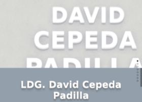 david.cepeda.mx