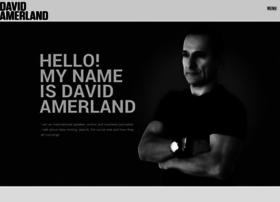 davidamerland.com