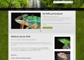 de-kvn.nl