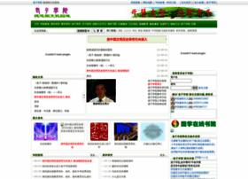 dedao.org
