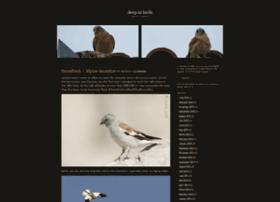 deepinbirds.wordpress.com