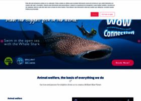 delphinusworld.com