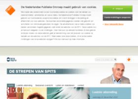 destrepenvanspits.kro.nl