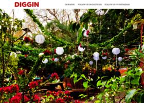 diggin.co.in