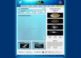 digitalfishlibrary.org