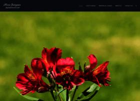 digitalfrescos.com