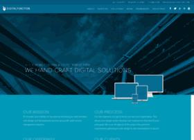 digitalfunction.com