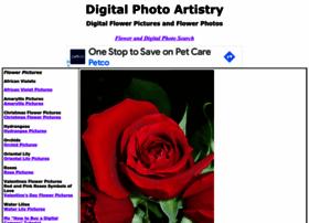 digitalphotoartistry.com