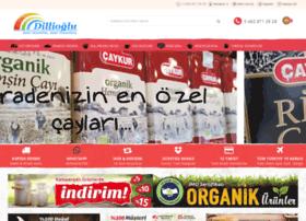 dillioglu.com