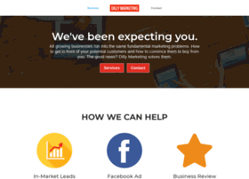 dillymarketing.com