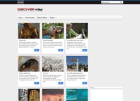 discover-wd.blogspot.com