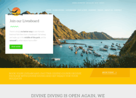 divinediving.com