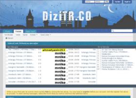 dizizevki.net