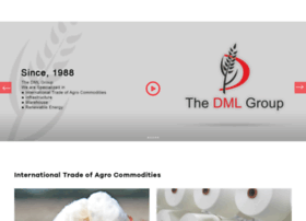 dmlgroup.in