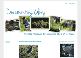 documentingglory.wordpress.com